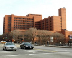 Lincoln Hospital in the Bronx.