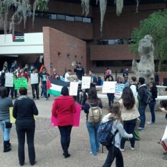 Protest in Gainesville, FL against massacre in Gaza