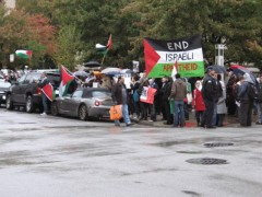 Protesters back Palestine in Chicago
