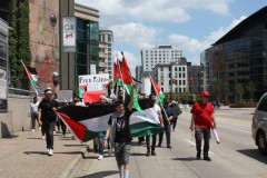 Standing with Palestine in Grand Rapids, MI.