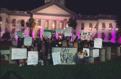 Protesters demand justice for victims of police crimes.