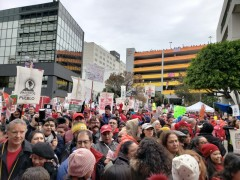 UTLA strikers rally against school privatization.