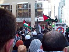 Gaza War Protest in Chicago, IL