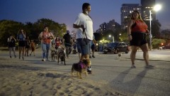 Chicago protest against police beating of Clack women who was walking her dog.