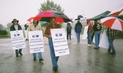 Picketers in a rainstorm