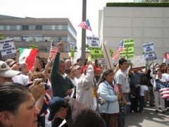 Immigrant rights activists formed a human chain around the federal building