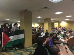 Palestine solidarity activists at USF support the resolution which includes dive