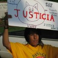 "Woman holding sign with hog cartoon, saying ""Justicia"""