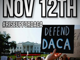 Nov 12 #RiseUpForDACA