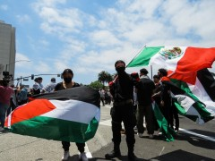 Los Angeles marches for a free Palestine.