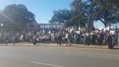 Protest in Dallas supports the struggle in Palestine.