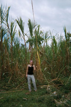 Angela Denio standing among tall foliage in Colombia