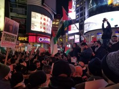 New York City rally in solidarity with Palestine.