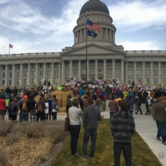 4000 protest Trump's plans to cut Bear's Ears and Grand Staircase-Escalante.