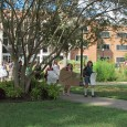 FSU students protest tuition hike policies.